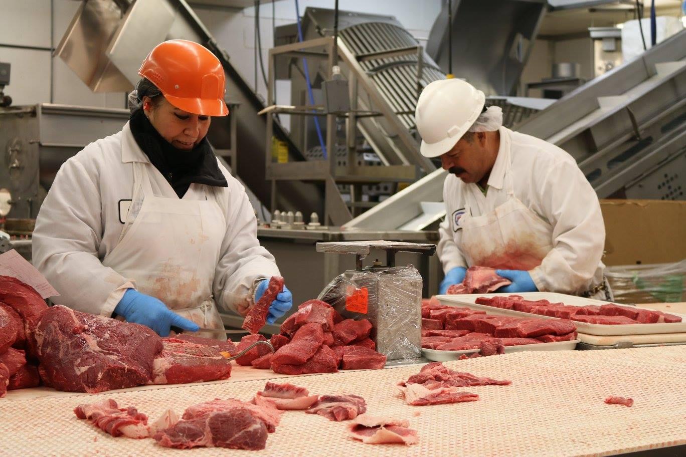 Steak cuttters